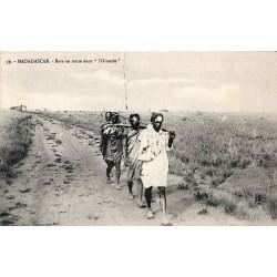 MADAGASCAR - Bara en route...