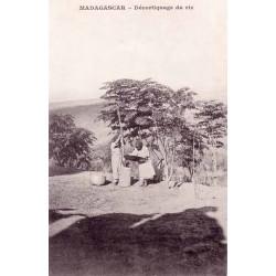 MADAGASCAR - Décorticage du riz -